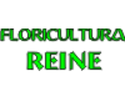 Floricultura Reine Ltda