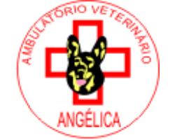Clínica Veterinária Angélica