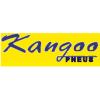Kangoo Pneus
